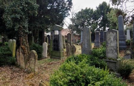 Židovský hřbitov Bzenec_70