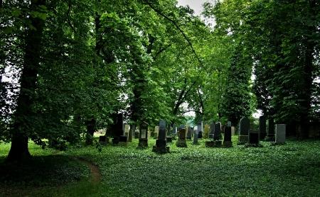 Židovský hřbitov Divišov_2