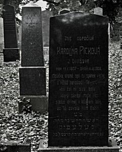 Židovský hřbitov Divišov_6