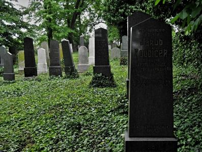Židovský hřbitov Divišov_7