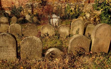 Židovský hřbitov Holešov_27
