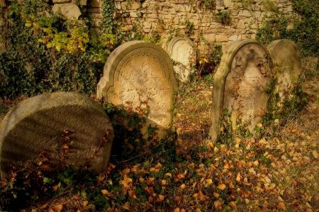 Židovský hřbitov Holešov_30