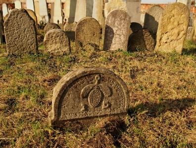 Židovský hřbitov Holešov_48