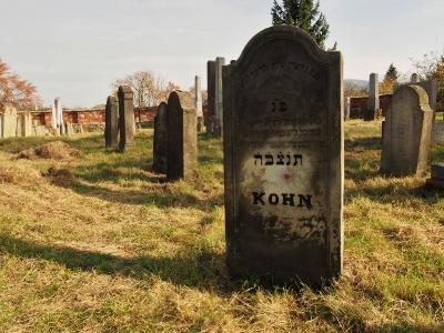Židovský hřbitov Holešov_65