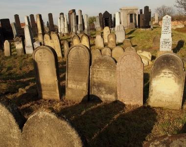 Židovský hřbitov Holešov_69