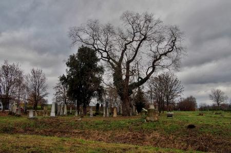 Židovský hřbitov Ivanovice na Hané_2