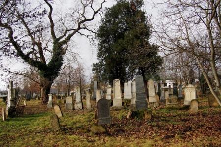 Židovský hřbitov Ivanovice na Hané_3