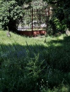 Židovský hřbitov Klatovy_2
