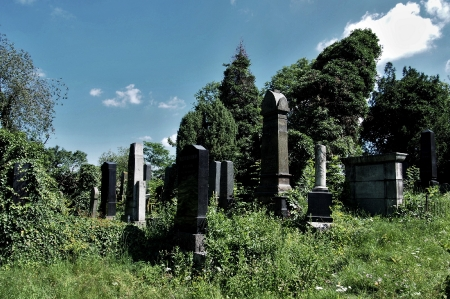 Židovský hřbitov Klatovy_6