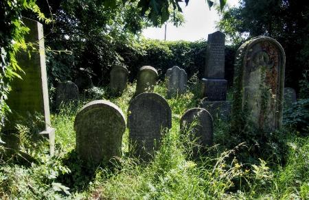 Židovský hřbitov Klatovy_8