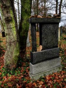 Židovský hřbitov Kostelec u Křížkůl_4