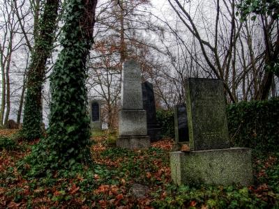 Židovský hřbitov Kostelec u Křížkůl_7