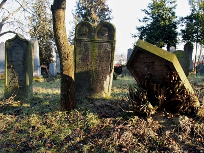 Židovský hřbitov Loštice - 4