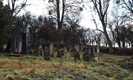 Židovský hřbitov Loštice_2