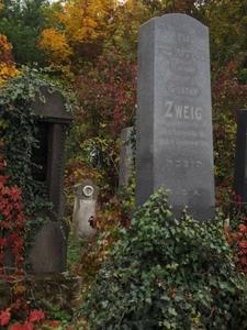 Židovský hřbitov Prostějov_10