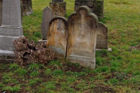 Židovský hřbitov Tovačov_4