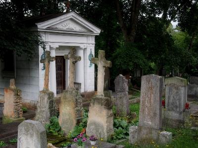 Hřbitov Plasy_8