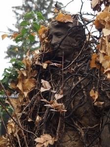 Hřbitov Prostějov_3
