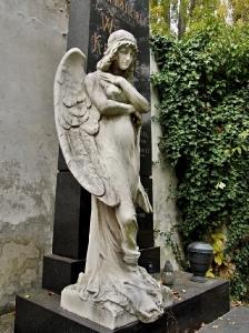 Hřbitov Prostějov_8
