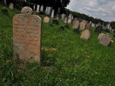 Židovský hřbitov Dolní Kounice_4