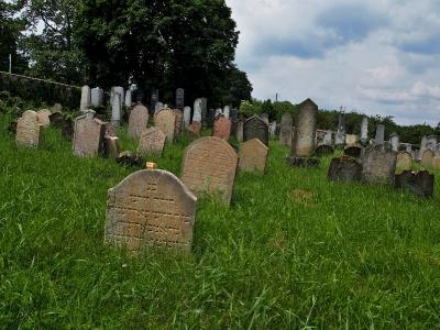 Židovský hřbitov Dolní Kounice_5