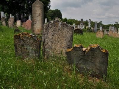 Židovský hřbitov Dolní Kounice_6