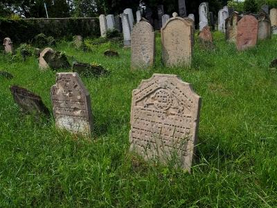 Židovský hřbitov Dolní Kounice_7