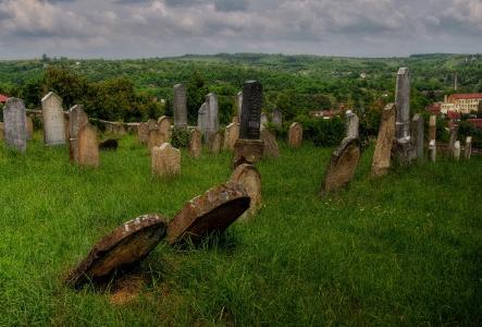 Židovský hřbitov Dolní Kounice_8