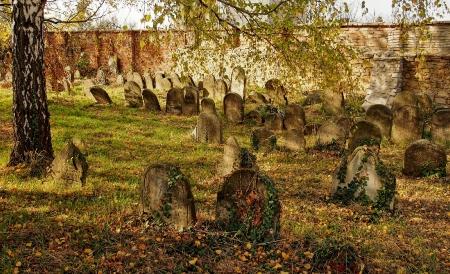 Židovský hřbitov Holešov_14