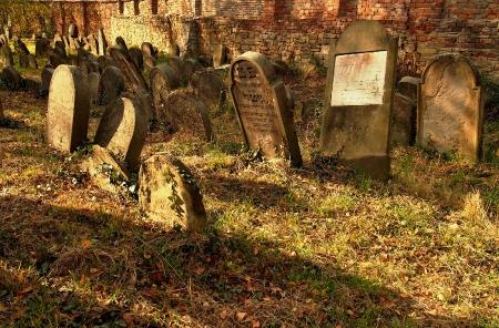 Židovský hřbitov Holešov_18