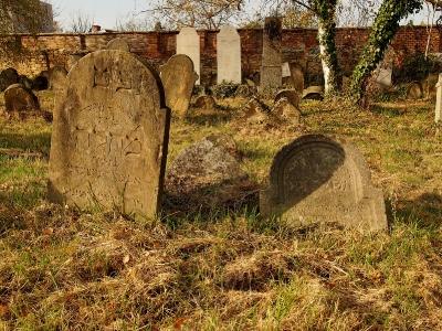Židovský hřbitov Holešov_23