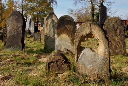 Židovský hřbitov Holešov_25