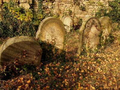 Židovský hřbitov Holešov_29