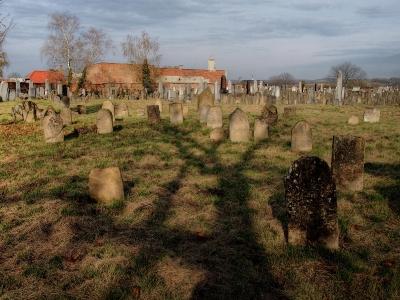 Židovský hřbitov Holešov_2