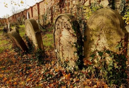 Židovský hřbitov Holešov_33