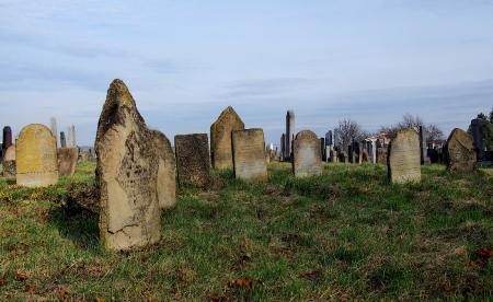 Židovský hřbitov Holešov_3