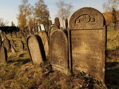 Židovský hřbitov Holešov_60
