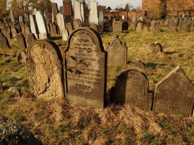 Židovský hřbitov Holešov_61