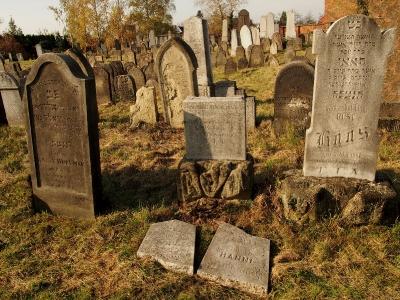 Židovský hřbitov Holešov_64