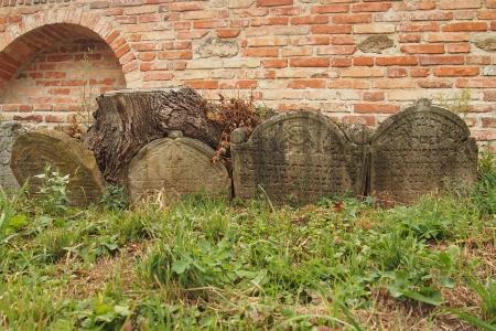Židovský hřbitov Ivančice_24