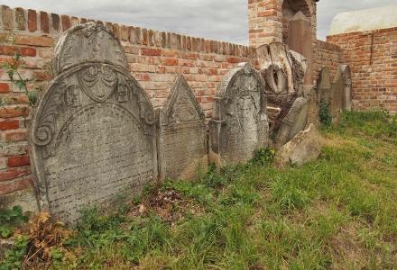 Židovský hřbitov Ivančice_29