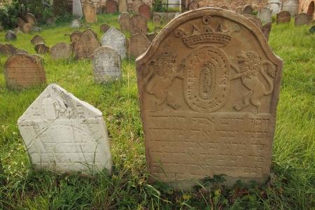 Židovský hřbitov Ivančice_45