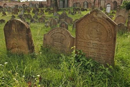 Židovský hřbitov Ivančice_50