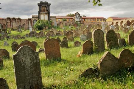 Židovský hřbitov Ivančice_51