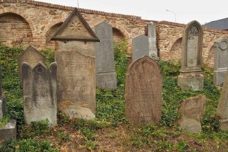 Židovský hřbitov Ivančice_61