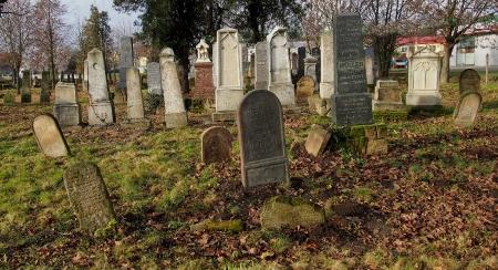 Židovský hřbitov Ivanovice na Hané_4