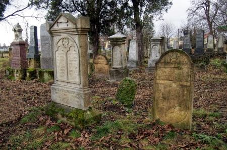 Židovský hřbitov Ivanovice na Hané_8