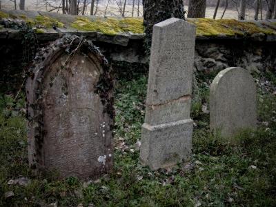 Židovský hřbitov Kamenice nad Lipou_5