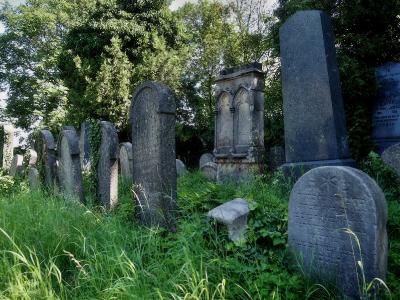 Židovský hřbitov Klatovy_7