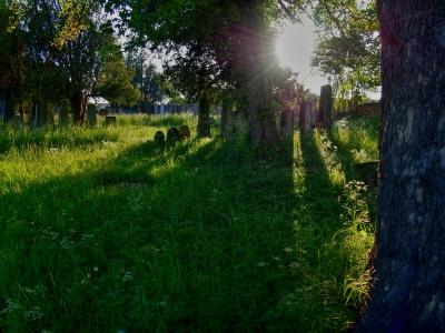 Židovský hřbitov Kojetín_3